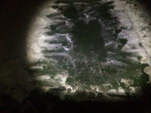 Fick skrapa bort lite snö på mattan för att köra styrka. Körde upphopp och amrövningar.