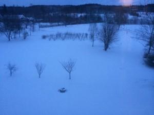 Lite snö kom det, bild på söndag morgon.