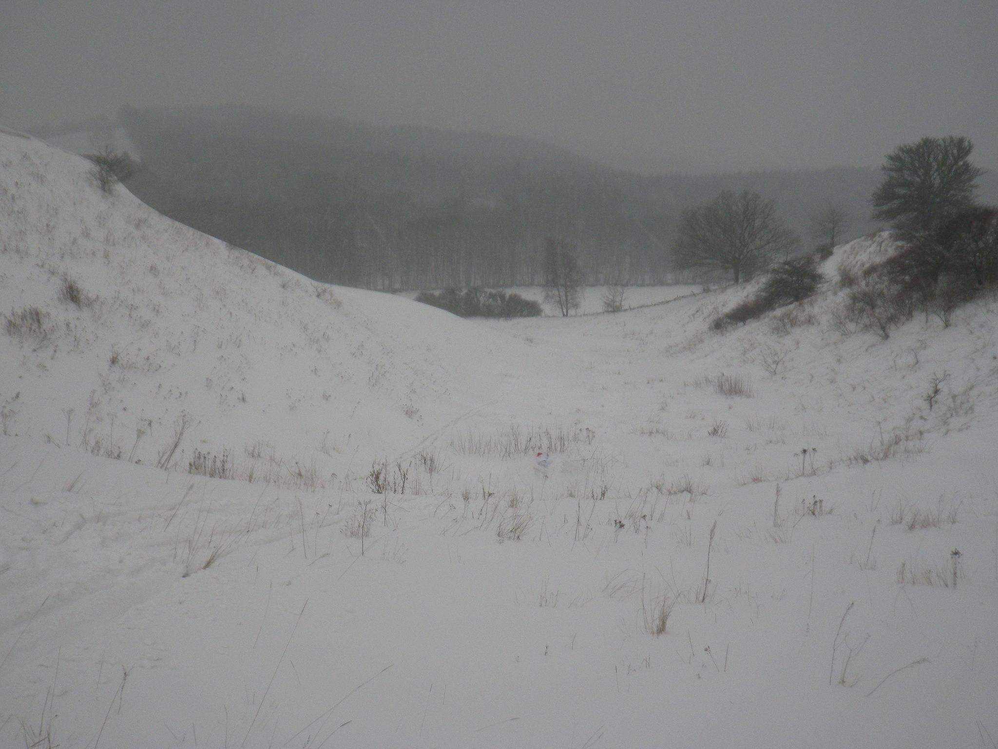 Trillade visst, man kan se min röda mössa om man zoomar in bilden i mitten, det var som sagt lite snö. Foto: Oskar Henriksson