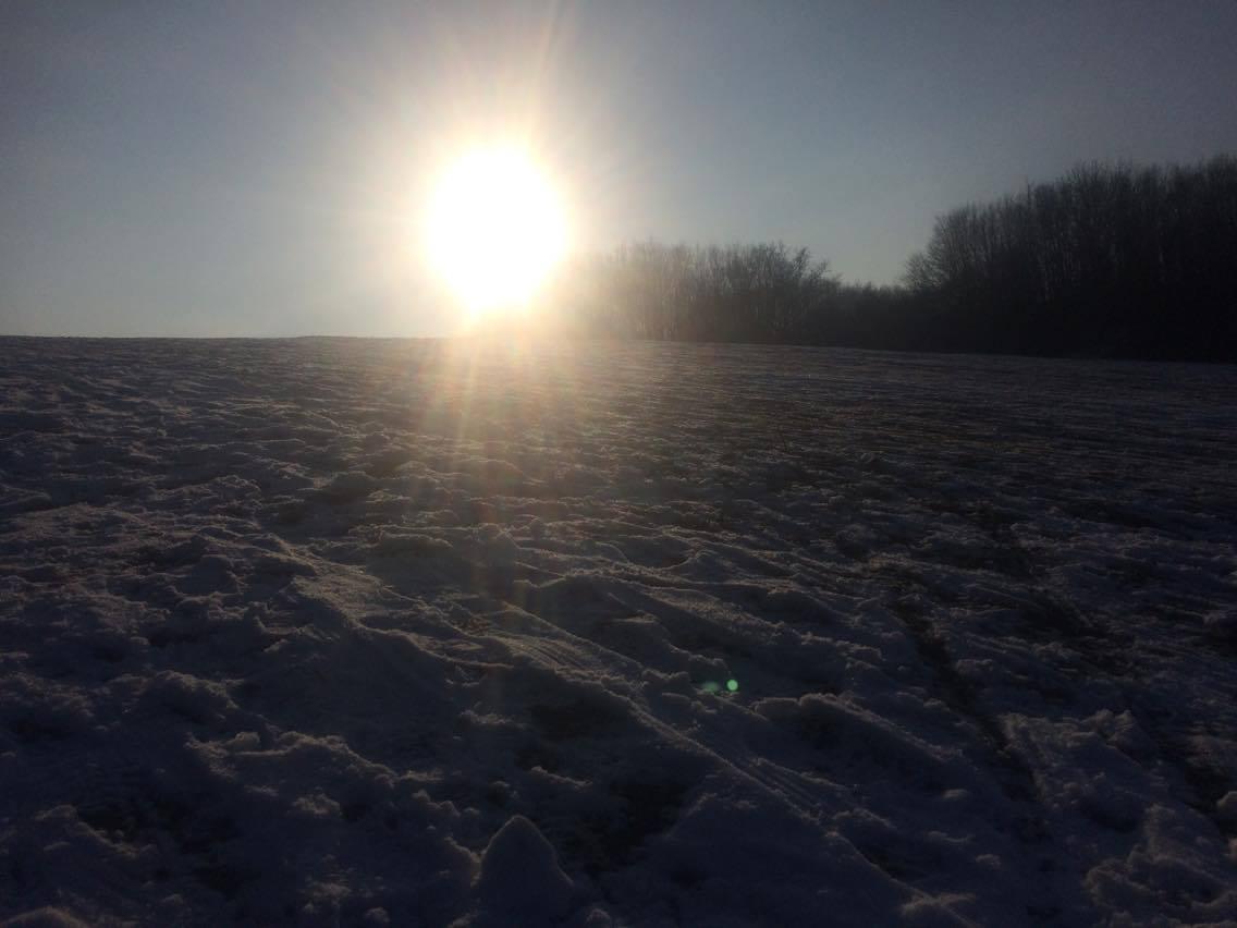 Vinter idag när man vaknade sen smälte det bort. Det är fel vintern, gör om  gör rätt!