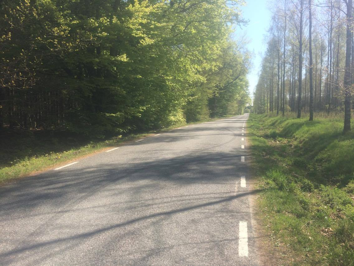 Dagens högsta punkt som man passerade med cykeln idag. 162 meter över havet mellan Eljaröd och Vitaby