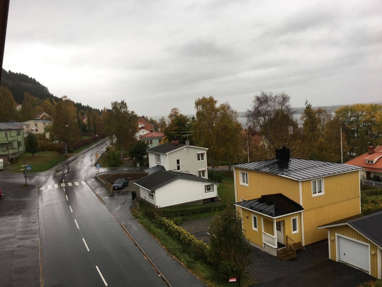 5 grader och regn, höll mig inomhus idag.