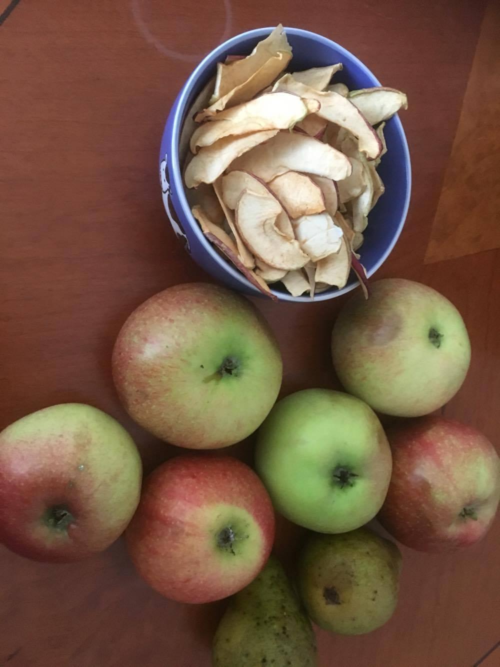 Torkad frukt, äpplen och päron.
